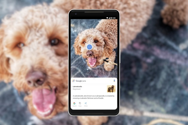 google_lens_dog_1-0